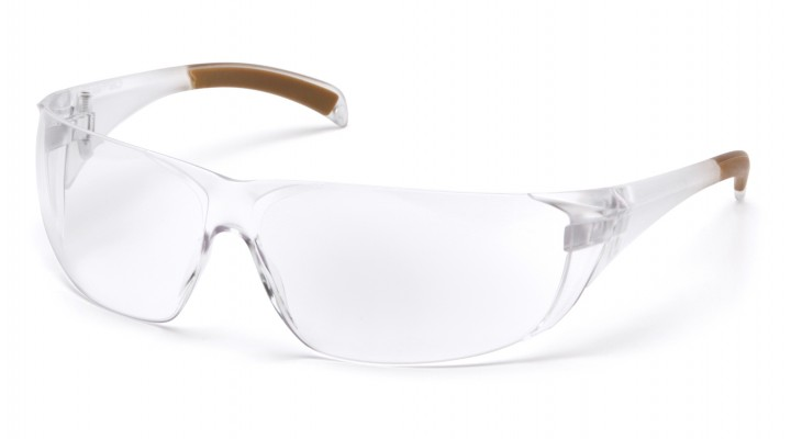 Clear Anti-Fog Lens with Clear Temples (clam shell)