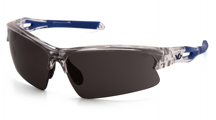 Gray Lens with Clear/Blue Frame