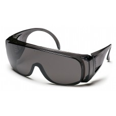 Gray Lens and Frame Combination