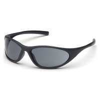 Gray Lens with Matte Black Frame
