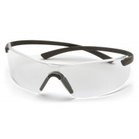 Clear Lens with Black Flex-Lite Temples