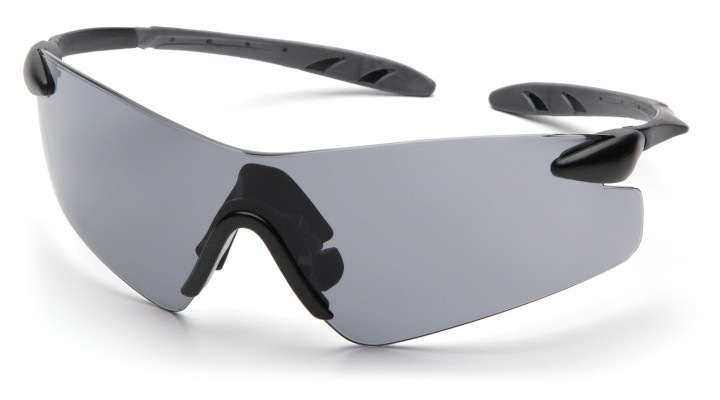 Gray Lens with Black Temples