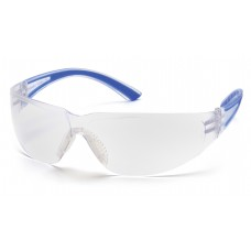 Clear Lens with Blue Temples