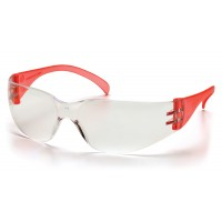 Clear Lens with Red Temples
