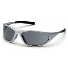 Gray Lens with Silver Frame